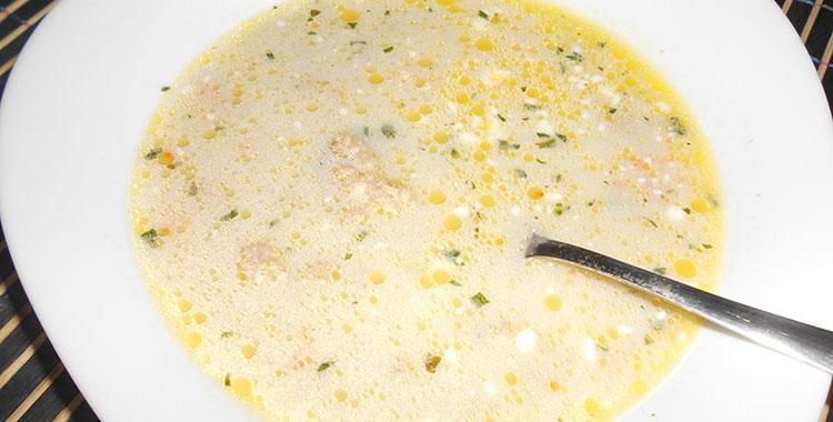 supa-od-mesanog-mesa-sladjana-bokic-ex-majer
